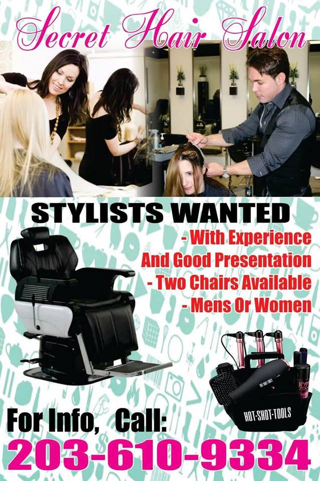 Sylist wanted english